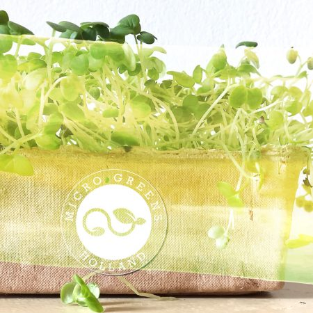 Microgreens Holland-nog toestemming vragen